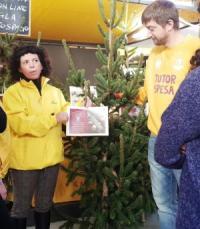 albero Natale Campagna Amica