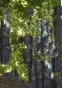 Foreste danneggiate, altri 4,7 milioni alle comunità montane lombarde