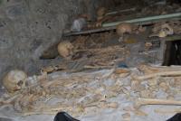 Cittiglio, scheletro, reperti