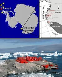 Foto Antartide, Università dell'Insubria