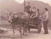 Mostra: Losone, famiglia di ritorno dalla campagna