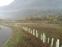 Vasca Boesio, foto Comunità montana Valli Verbano