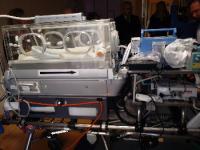 ventilatore Lions
