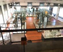 Sezione per ipovedenti, Civiltà Golasecca, reperti Museo Archeologico di Sesto Calende